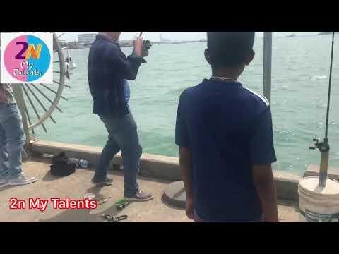 Fishing #Catfish #Singapore #fun Play Time #How To Catch Fish