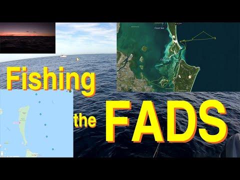 Fishing The FADs