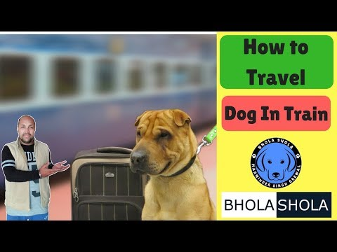 Pet Care - How to Travel Dog in Train - Bhola Shola