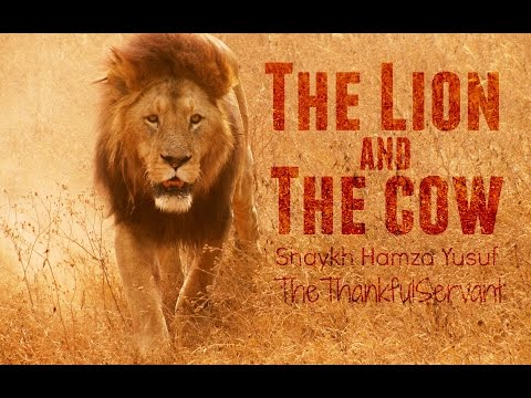 The Lion And The Cow | Shaykh Hamza Yusuf | TheTha