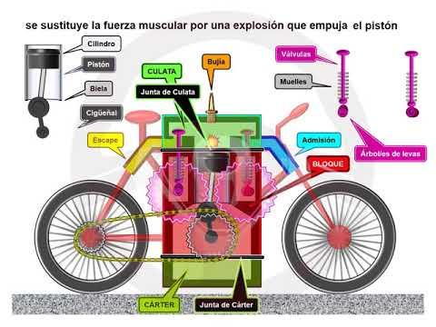 ASÍ FUNCIONA EL AUTOMÓVIL (I) - 1.6 Motor de gasolina (2/11)