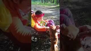 Дружба - собака по кличке Мажор и ребенок с особенными потребностями. Животные любят таких детей!