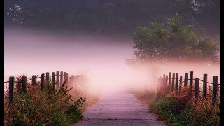 Видеть во сне дорогу - К чему снится дорога?