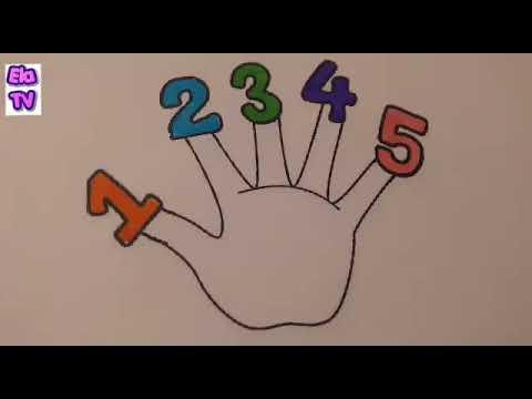Parmak Ailesi Sayıları öğreniyoruz Parmak Boyama Oyunu Youtube