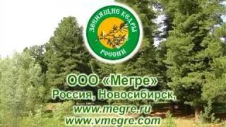 Видео презентация компании ООО