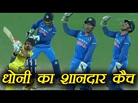 India Vs Australia 1st ODI: MS Dhoni takes a stunning catch of David Warner | वनइंडिया हिंदी