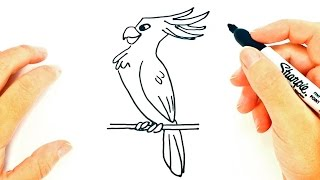 How to draw a Cockatoo | Cockatoo Easy Draw Tutorial