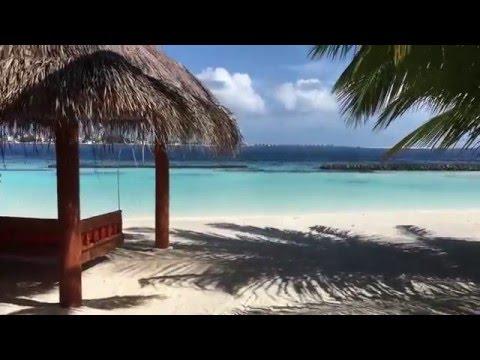 Vilu Reef Beach and Spa Resort Maldives Travel Vlog