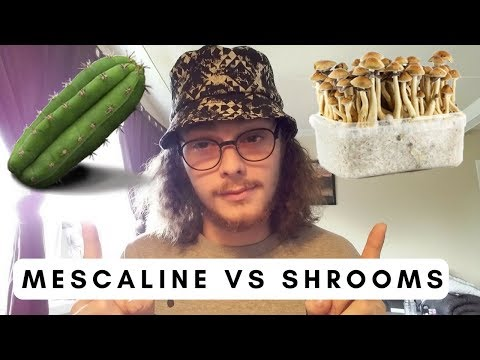 Mescaline VS Shrooms