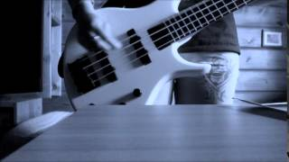 Anna Järvinen - Nuori Ja Kaunis (feat. Olavi Uusivirta) Bass Cover