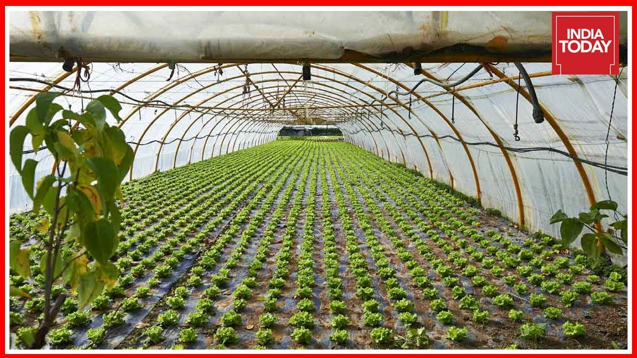 Inspiring Story Of Farmer Who Set Up Green House From Plastic Waste | Good News Today