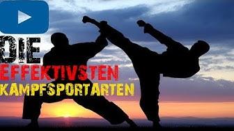 Die 10 Effektivsten Kampfsportarten -BrosTV