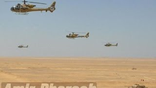 """Egyptian Army In Action """"Nasr-11 نصر"""""""