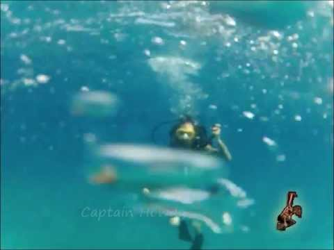 A Body Suspension Underwater - By Captain Howdy