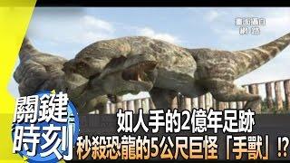 如人手的2億年足跡 秒殺恐龍的5公尺巨怪「手獸」!? 2014年 第1807集 2300 關鍵時刻 thumbnail