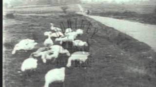 Omnibus Travel, 1920's - Film 15104