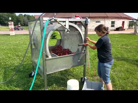 Stainless Steel Vegetable Barrel Washer   Root Washer