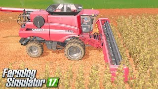 Słonecznikowe żniwa - Farming Simulator 17 [PLATINUM] | #35