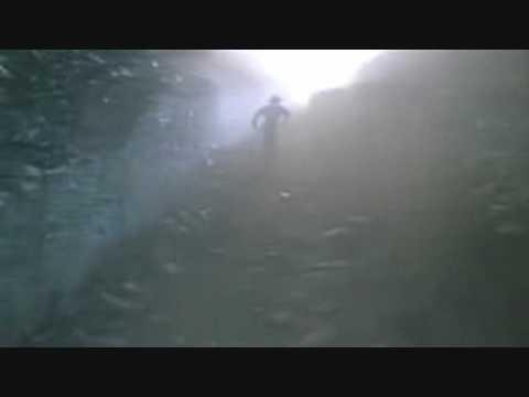 Nevermet-Runaway
