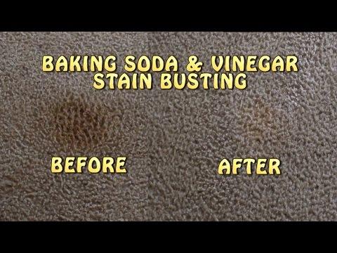 Baking Soda & Vinegar Carpet Stain Busting!!!