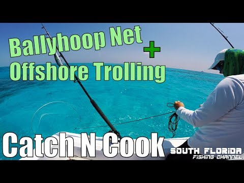 Catch and Cook | Using a BallyHoop Net and Trolling Offshore Key Largo