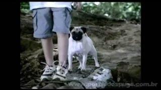 Hutch - Comerciais de TV de 2003 - Compilação de 7 Propagandas com Pug