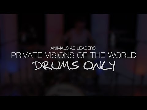 Louis Sellers - Animals As Leaders - Private Visions of the World (Drums Only)