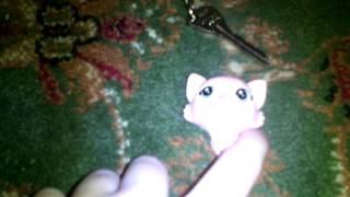 Кети вор украла ключ от дома Маршала игрушки  щенячий