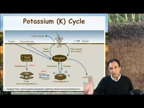 Soil Potassium, Ag Nutrient Management