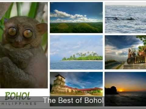THE BEST OF BOHOL - Beach resorts and island attractions