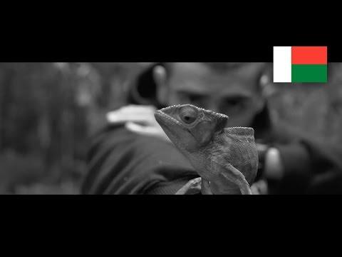 Quebonafide x FORXST - Madagaskar