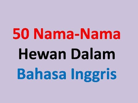 50 Nama Nama Hewan  Dalam Bahasa Inggris Untuk Anak-Anak -Belajar Bahasa Inggris