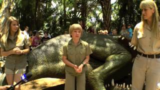 Robert Irwin Celebrates 10th Birthday by Feeding a Saltwater Crocodile