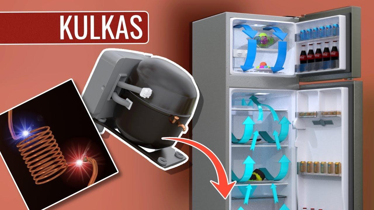 Bagaimana cara kerja kulkas youtube bagaimana cara kerja kulkas swarovskicordoba Gallery