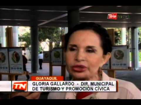 El aviturismo: Nuevo atractivo en Guayaquil