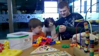Video-2010-03-06-14-50-34