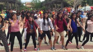 Texas A & M Kingville  FLASHMOB 2015