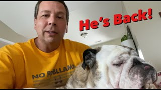Reuben the Bulldog: While Dad Is Away