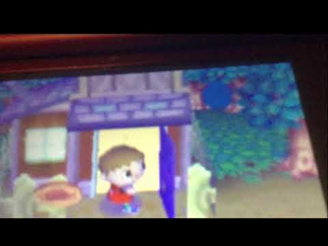 Animal Crossing Wild World Ep 37 Carpet