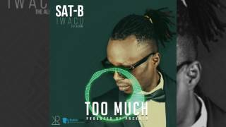 sat b too much audio iwacu album 2