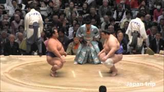 琴奨菊 vs 碧山の取組。 2016大相撲春場所6日目。