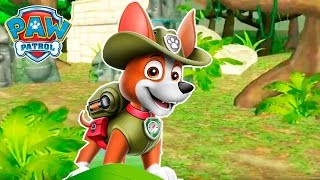 PAW Patrol - The Jungle New location with a puppy Tracker.