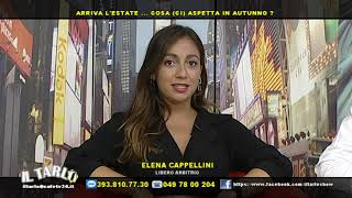 Come Un Delfino Streaming cast e trama episodio 2x4 - Super Guida TV
