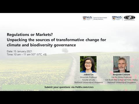 Regulations or Markets? Unpacking the sources of transformat