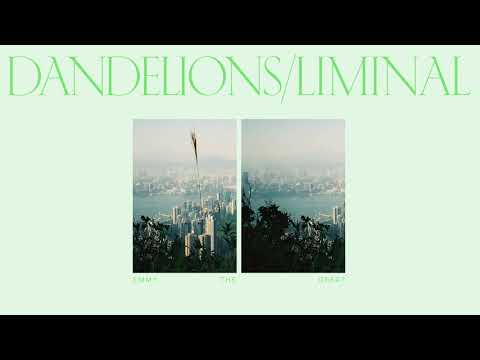 Emmy The Great - Dandelions/Liminal