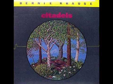 Bernie Krause -  Festival Of The Sun -  1979