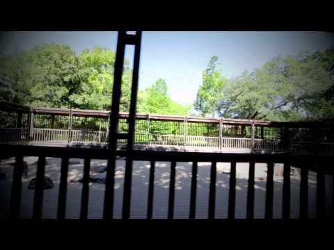 Aqueous Transmission - Incubus - Fort Worth Botanical Japanese Garden
