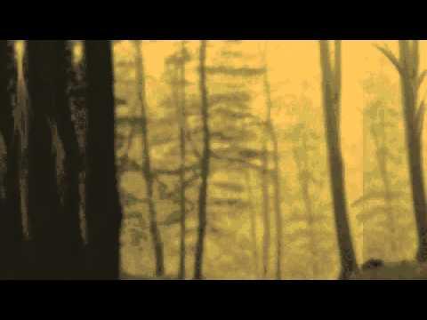 Love Theme [Blade Runner] - Hungersleep Productions