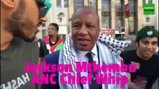 South Africa's Minister in the Presidency Jackson Mthembu at a Free Palestine march