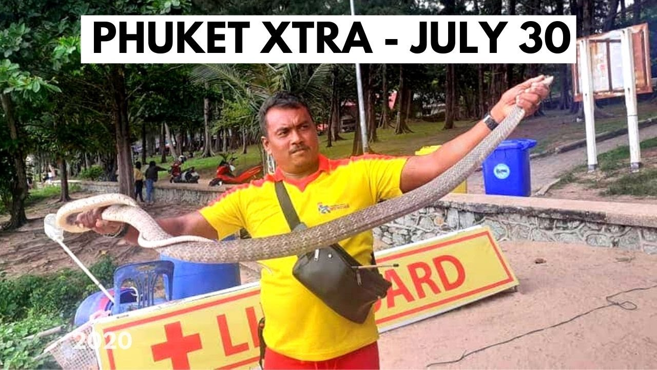 Two large snakes caught at Nai Harn! Six new coronavirus cases in Thailand! || Thailand News